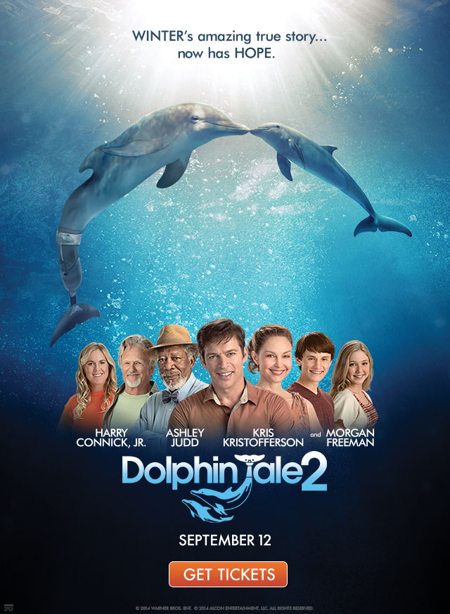 Dolphin Tale2- September 12 Get tickets